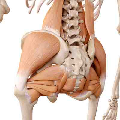Hip Flexor Injury